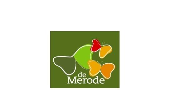 Logo de Merode4