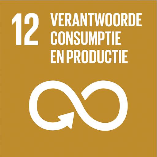Sdg12 Verantwoorde Consumptie En Productie