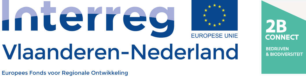 Logo 2B Connect Interreg